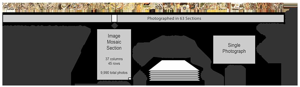 World\'s First Terapixel Macro Image